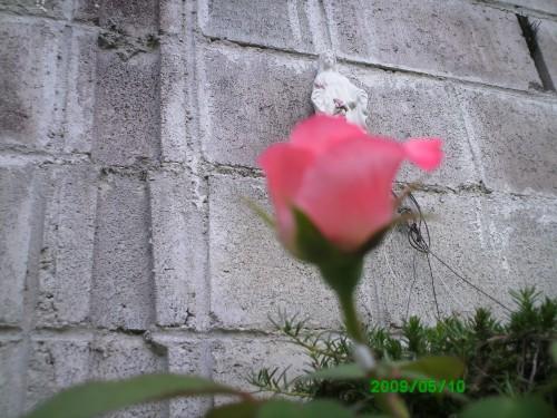 PICT0084.JPG