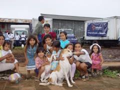12OCT005 perros de lluvias 2 DSC03577.JPG
